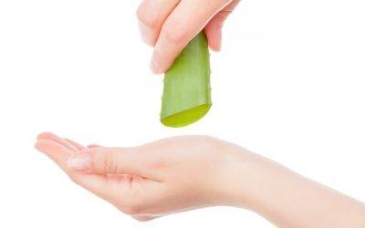 Aloe Vera for Skincare